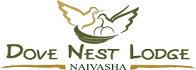 dove_nest_logo